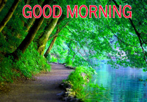 Nature Good Morning Images pictures pics hd
