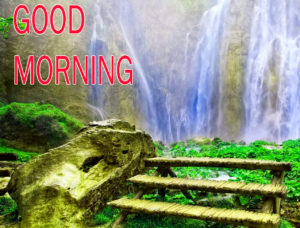 Nature Good Morning Images pictures download