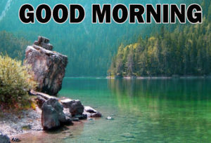 Nature Good Morning Images pics for whatsapp