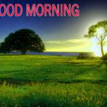 Nature Good Morning Images , Nature Good Morning , Nature Good Morning Pics Wallpaper