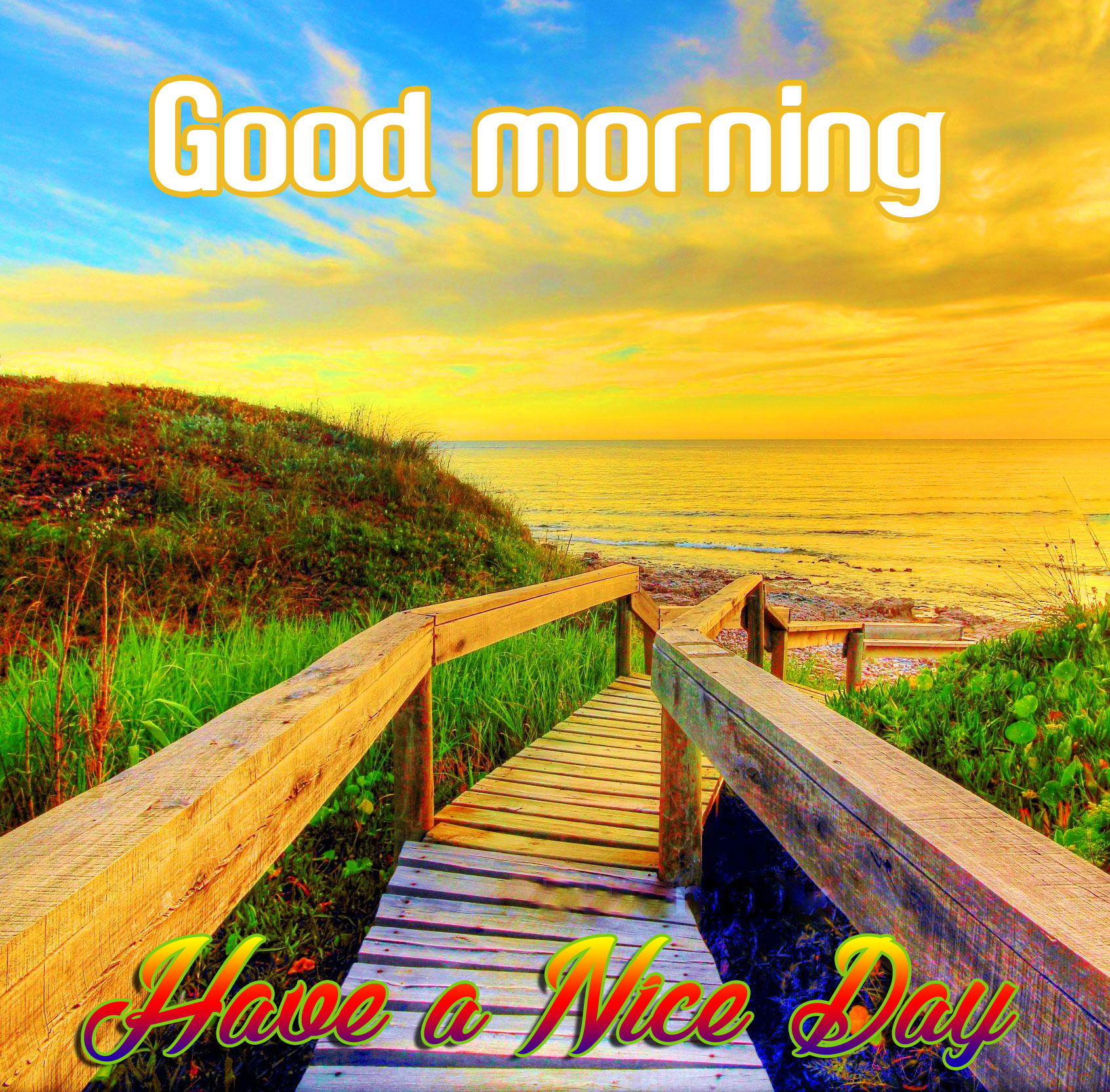 Good Morning Image with Nature Pics Download