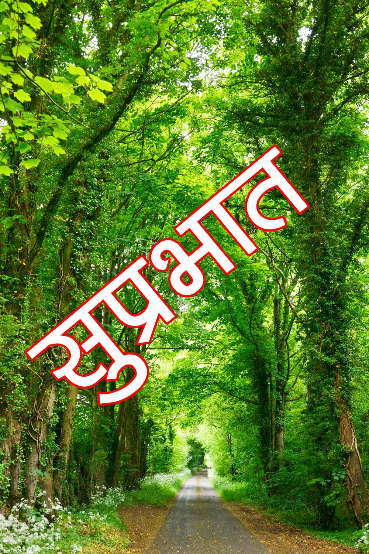 Good Morning Image with Nature Pics Wallpaper HD