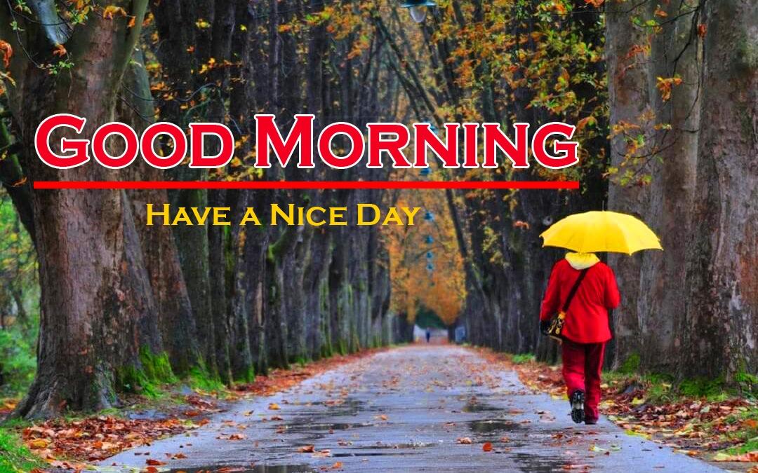 Rainy Day Good Morning Images 7