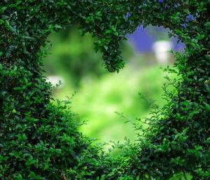 Romantic Love Profile Images pictures hd