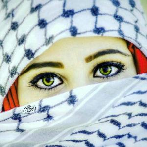 Whatsapp DP Images wallpaper photo free hd download