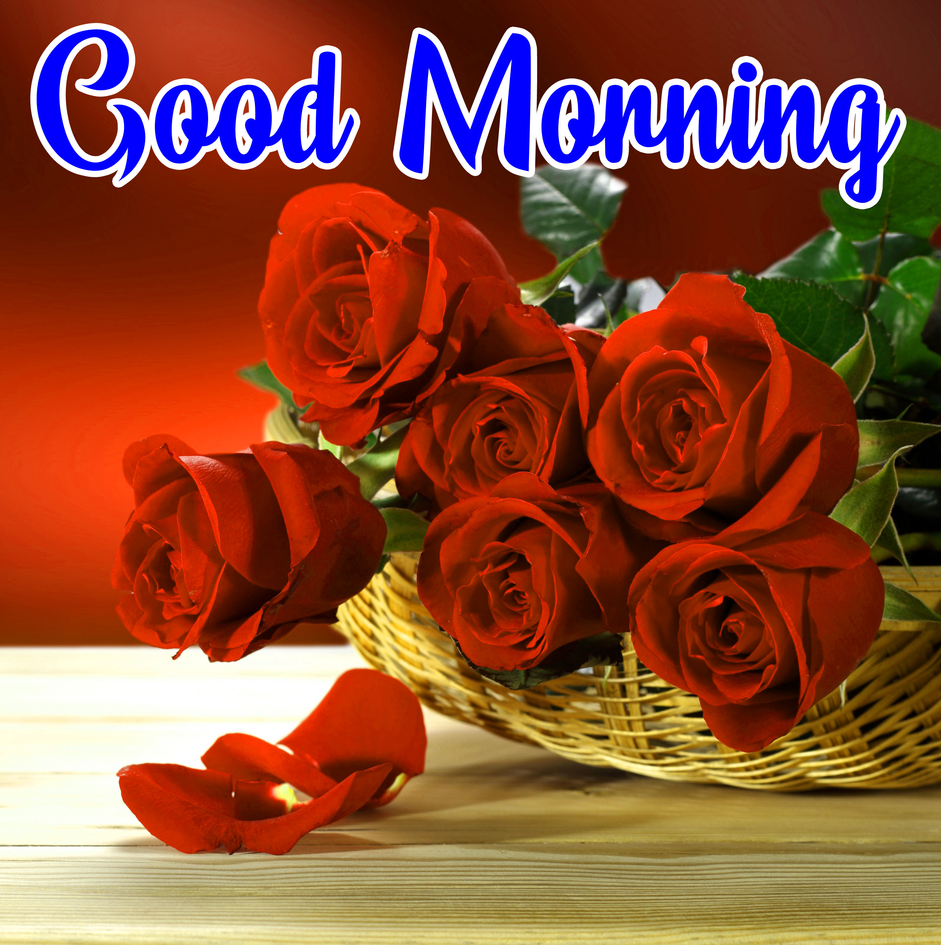 Flowers Love Good Morning Wallpaper Download