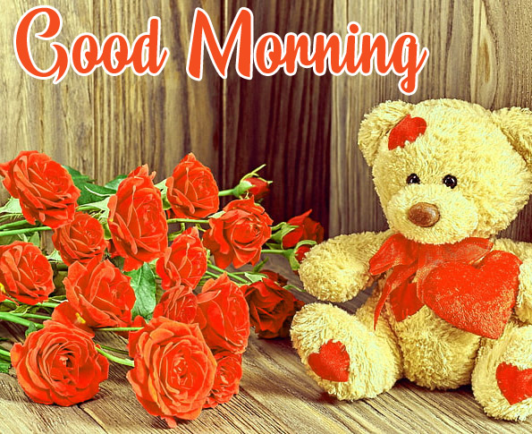 Flowers Love Good Morning Pics Download