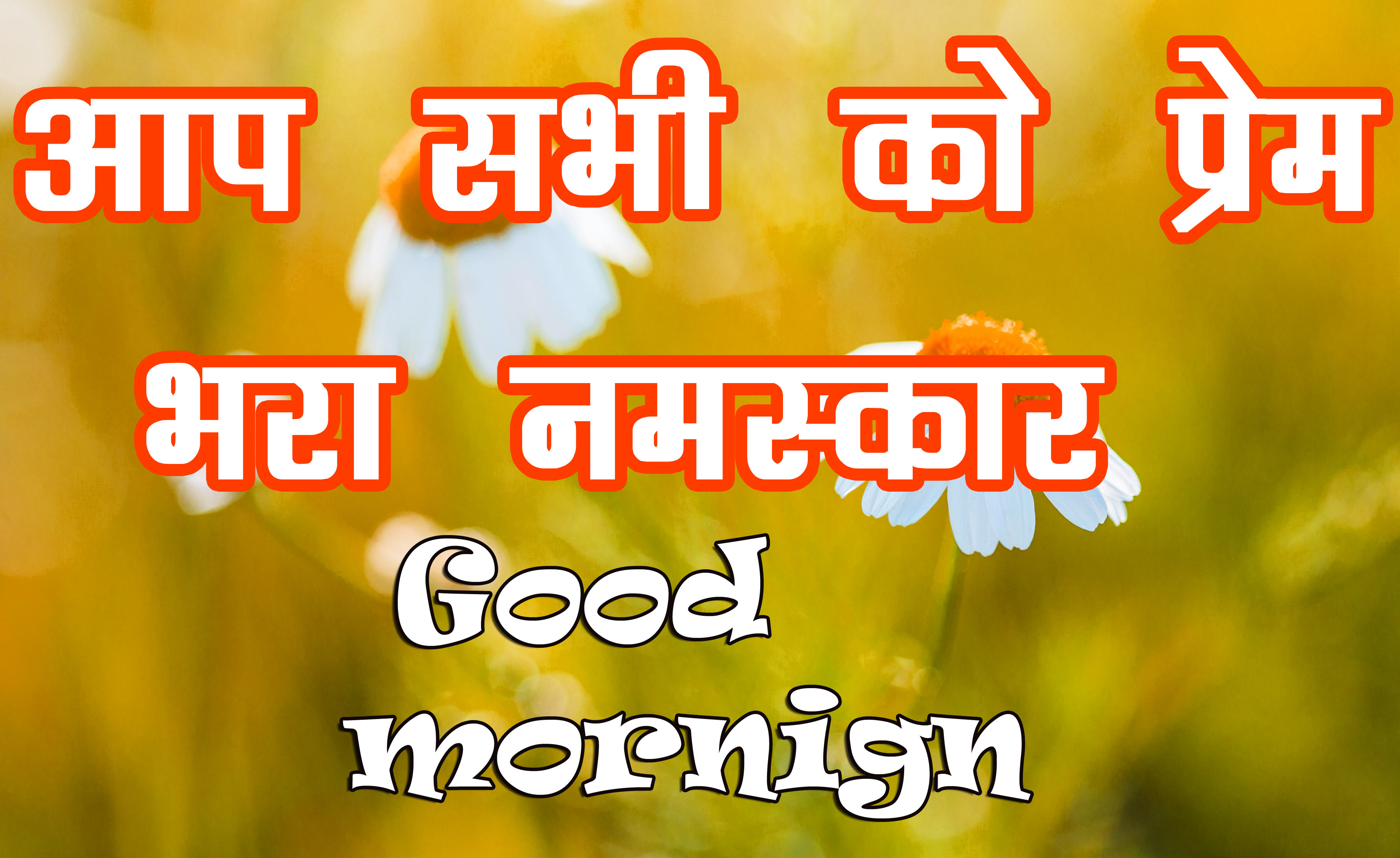 Special Good Morning Images Wallpaper Pics Free