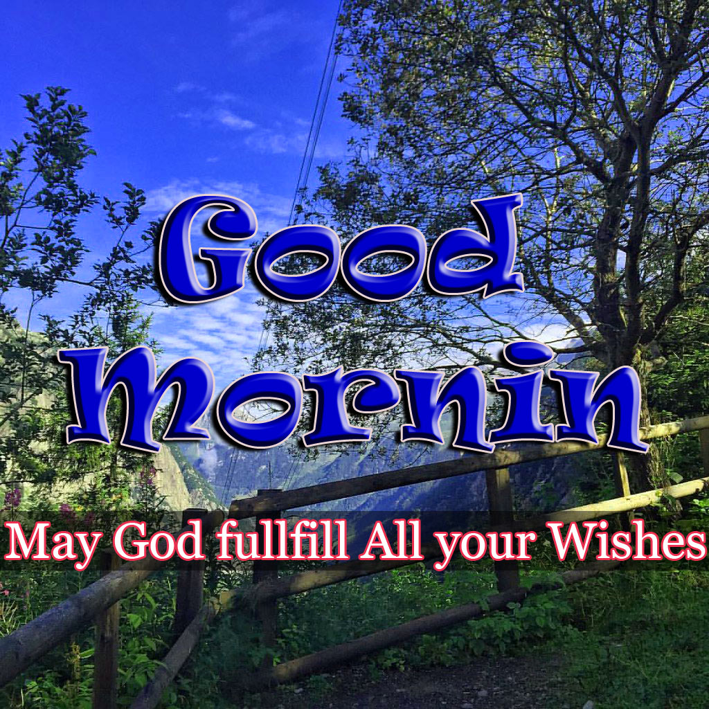 Special Good Morning Images Pics Free Download