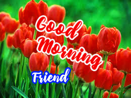 Friend Good Morning Images Photo With Flower