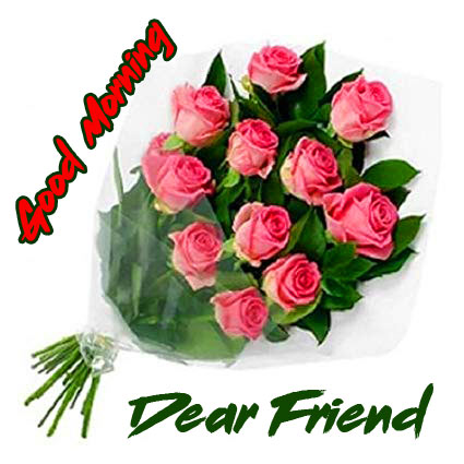 Friend Good Morning Images Wallpaper Pics With Rose
