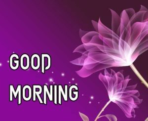 Good Morning Images pics photo free hd
