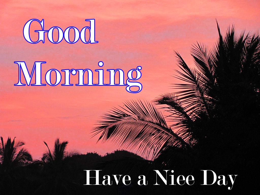 good morning photo 4