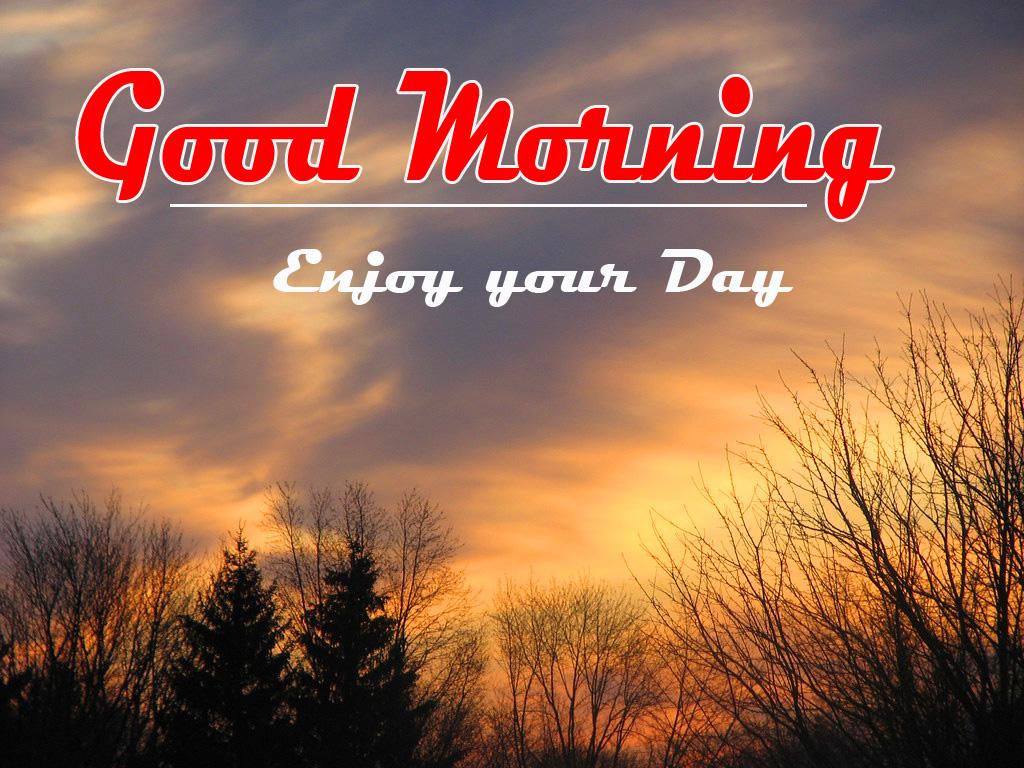 good morning photo 5