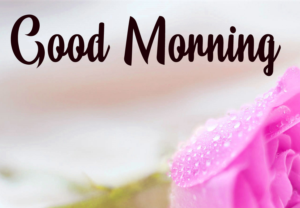 good morning photo hd