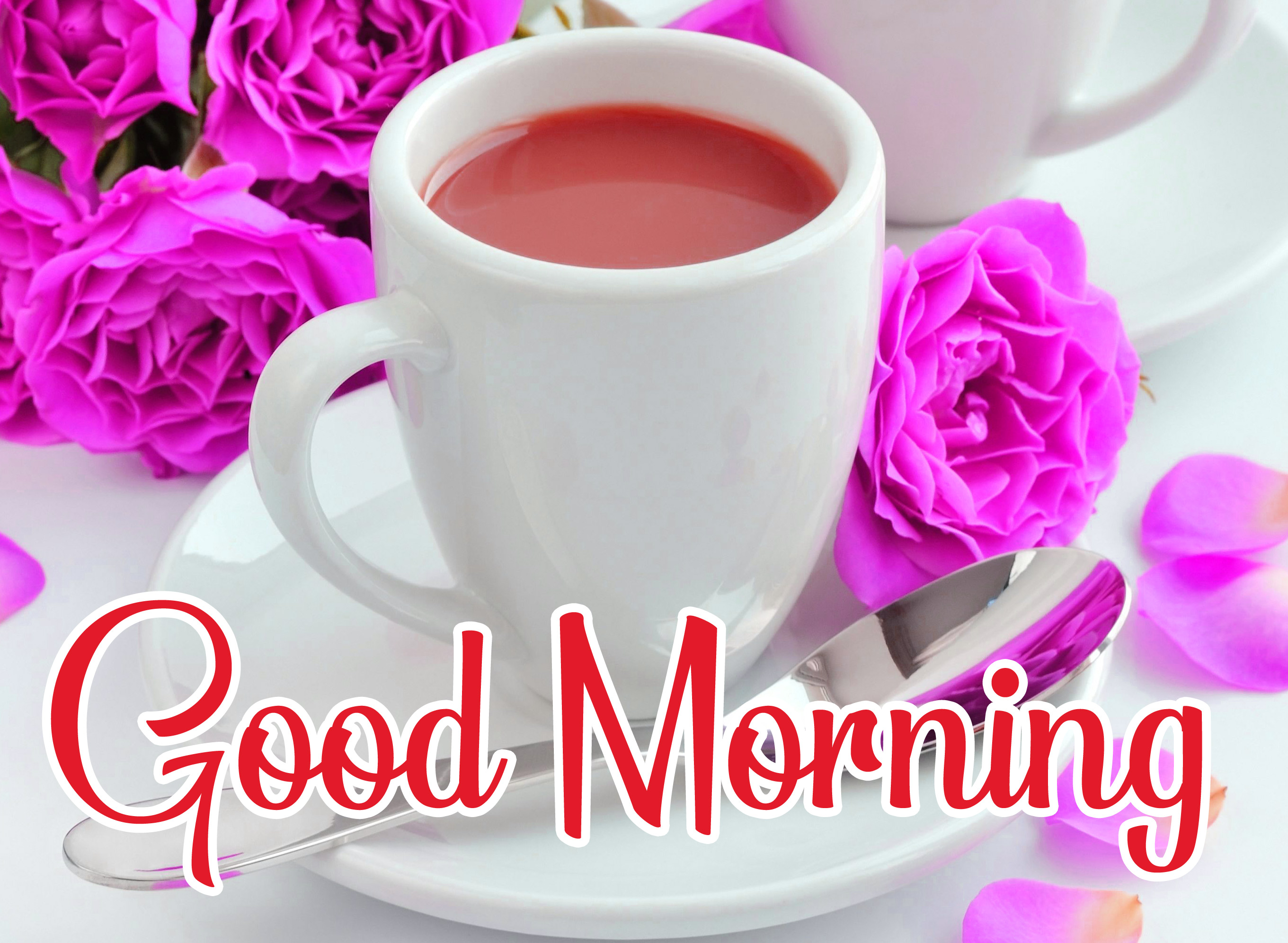 Good Morning Tea Cup Images With Red Rose