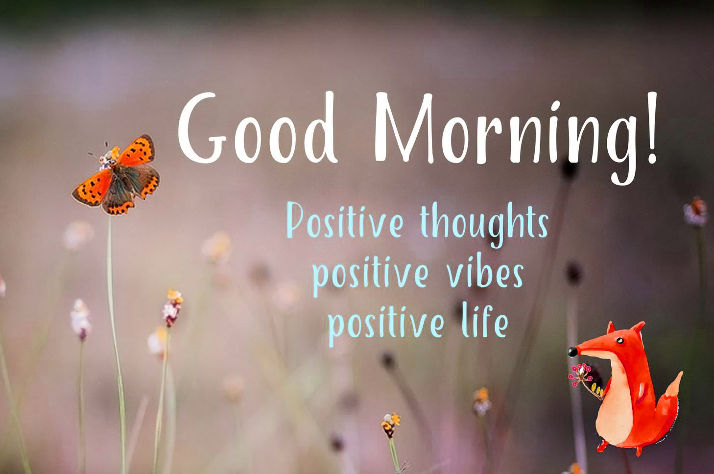 Good morning thought Wallpaper Free Download