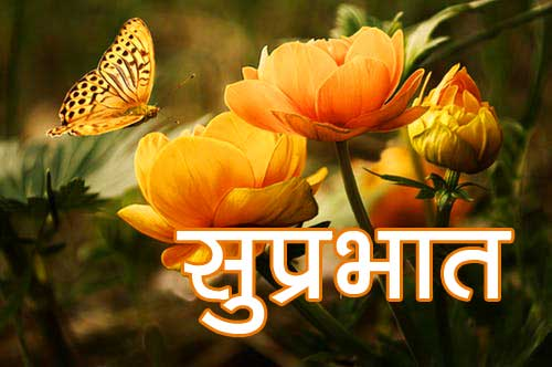 Suprabhat Pics Pictures Free Download In HD