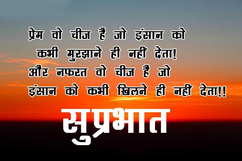 Suprahat Pics Wallpaper Pics Free Download