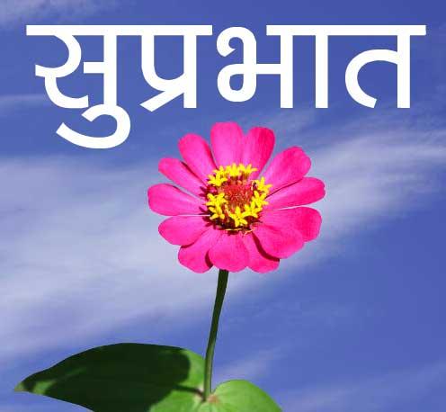 Flower Suprabhat Pics Wallpaper Free Download