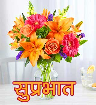Suprabhat Images Pictures Photo Free With Flower