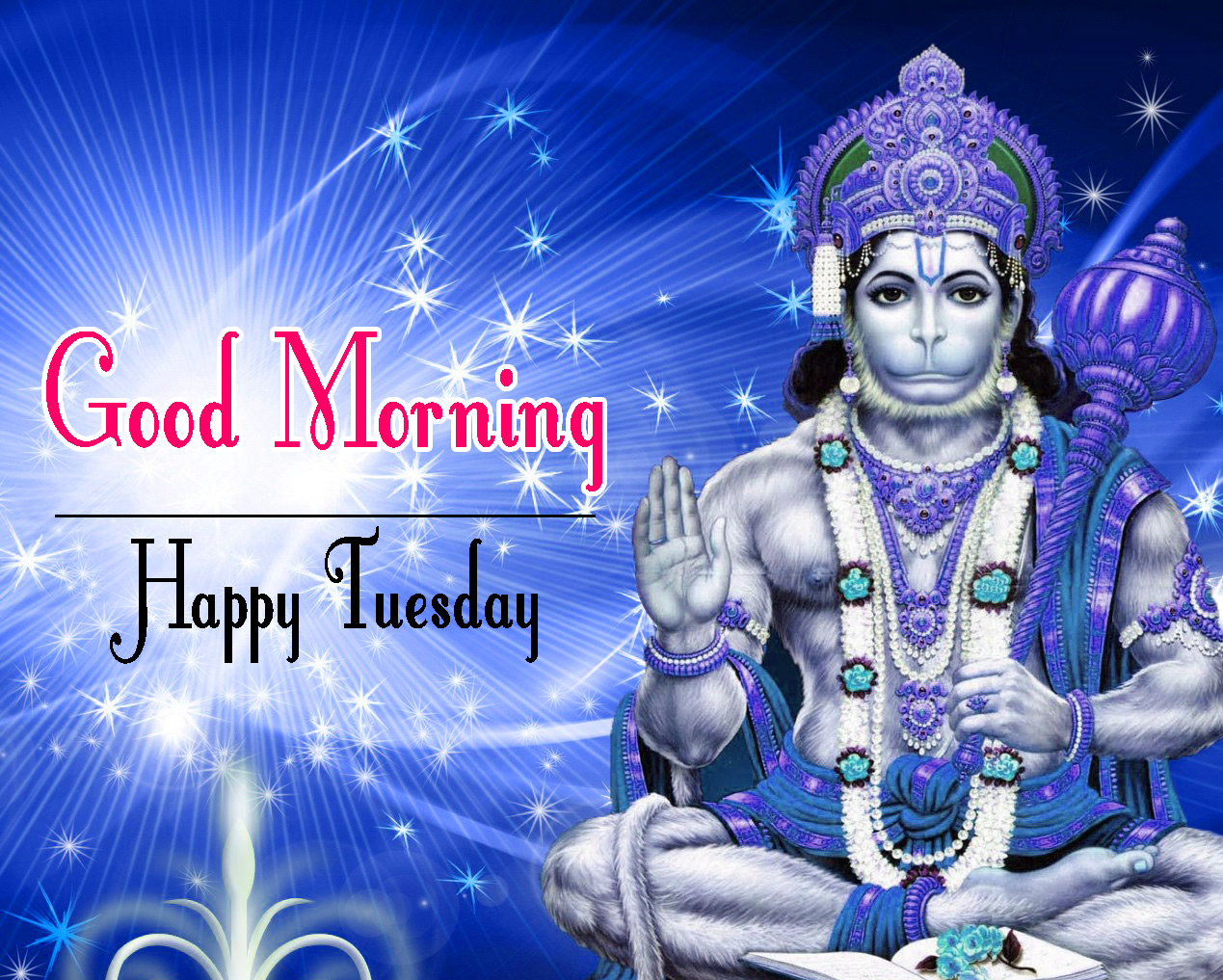 tuesday good morning Images Free Download
