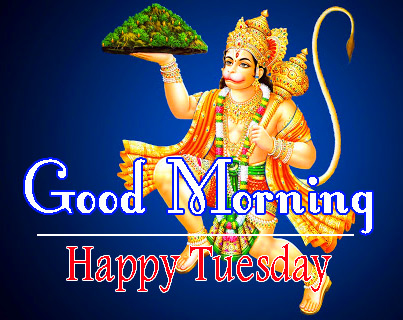 tuesday good morning Pictures Download