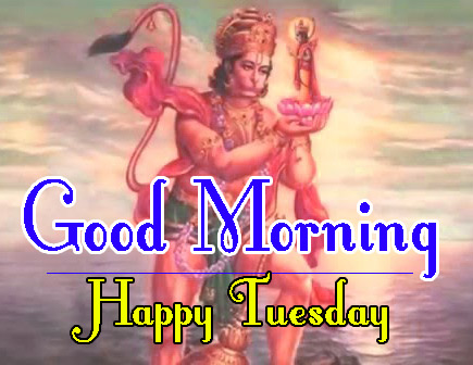 tuesday good morning Pics Download