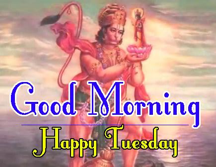 tuesday good morning Pics Download