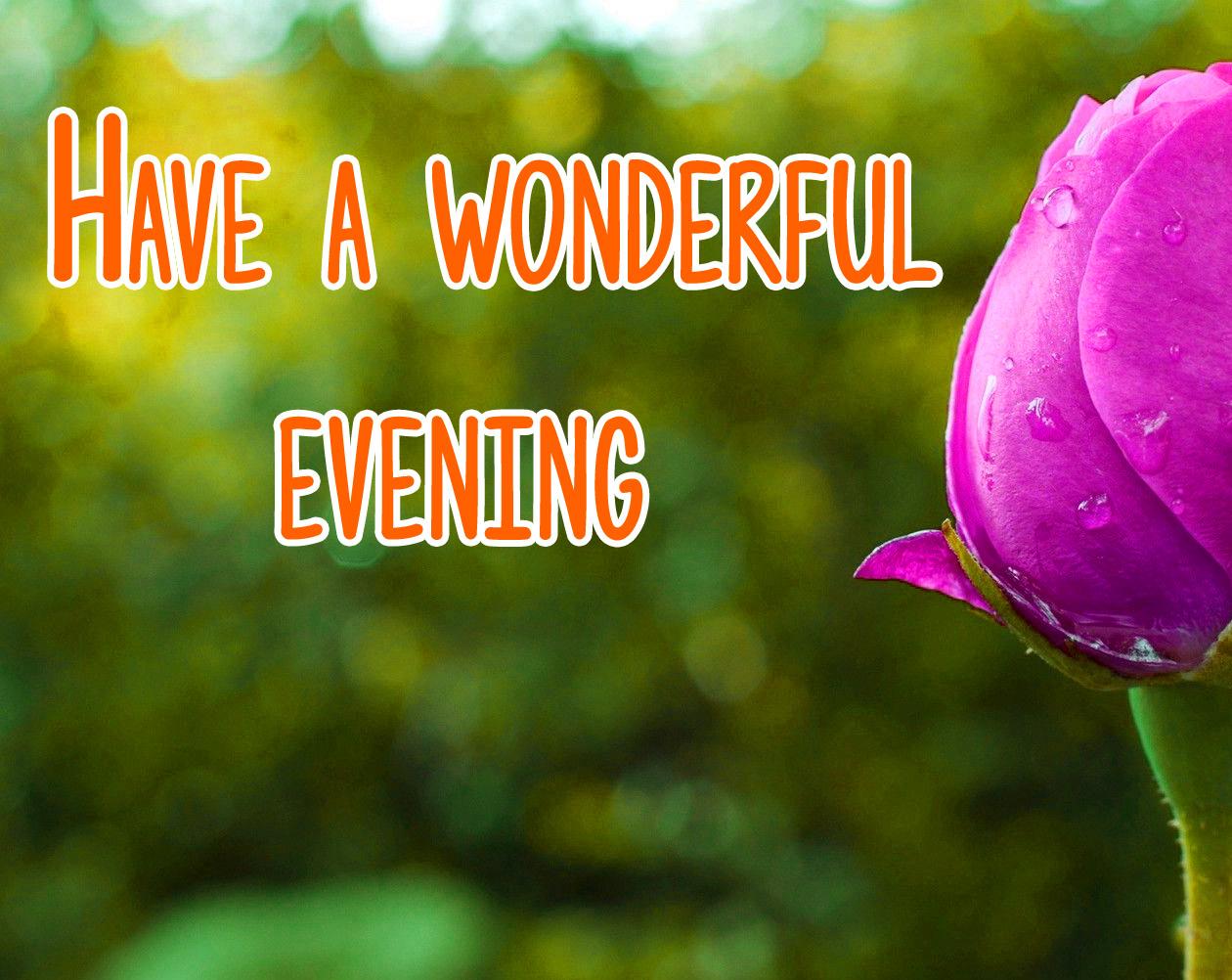 Beautiful Good Evening Images 15