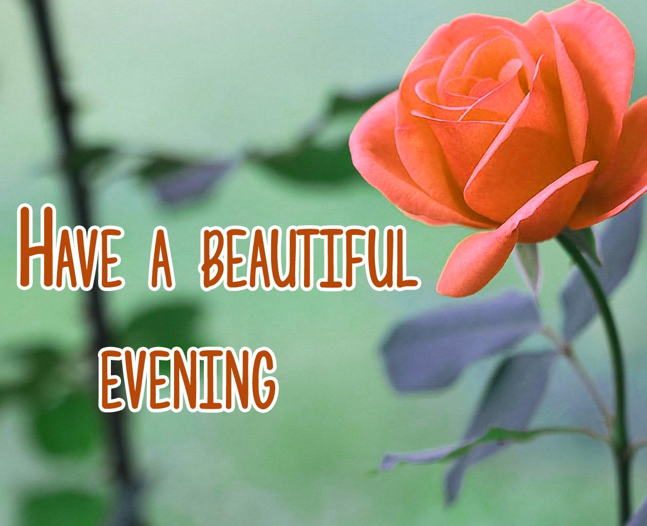 Beautiful Good Evening Images 16