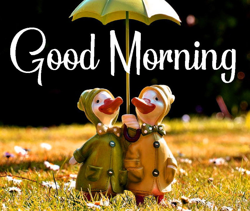 Cute good morning Pictures Download