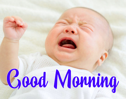 Funny Good Morning Wishes Pics HD