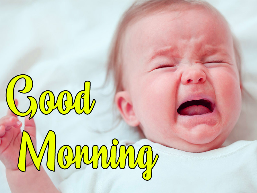 Funny Good Morning Wishes Wallpaper Download