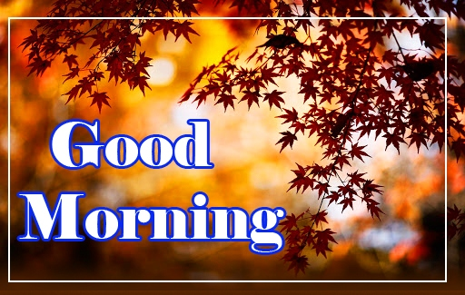Good Morning Images Download 10