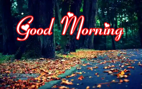 Good Morning Images Download 7