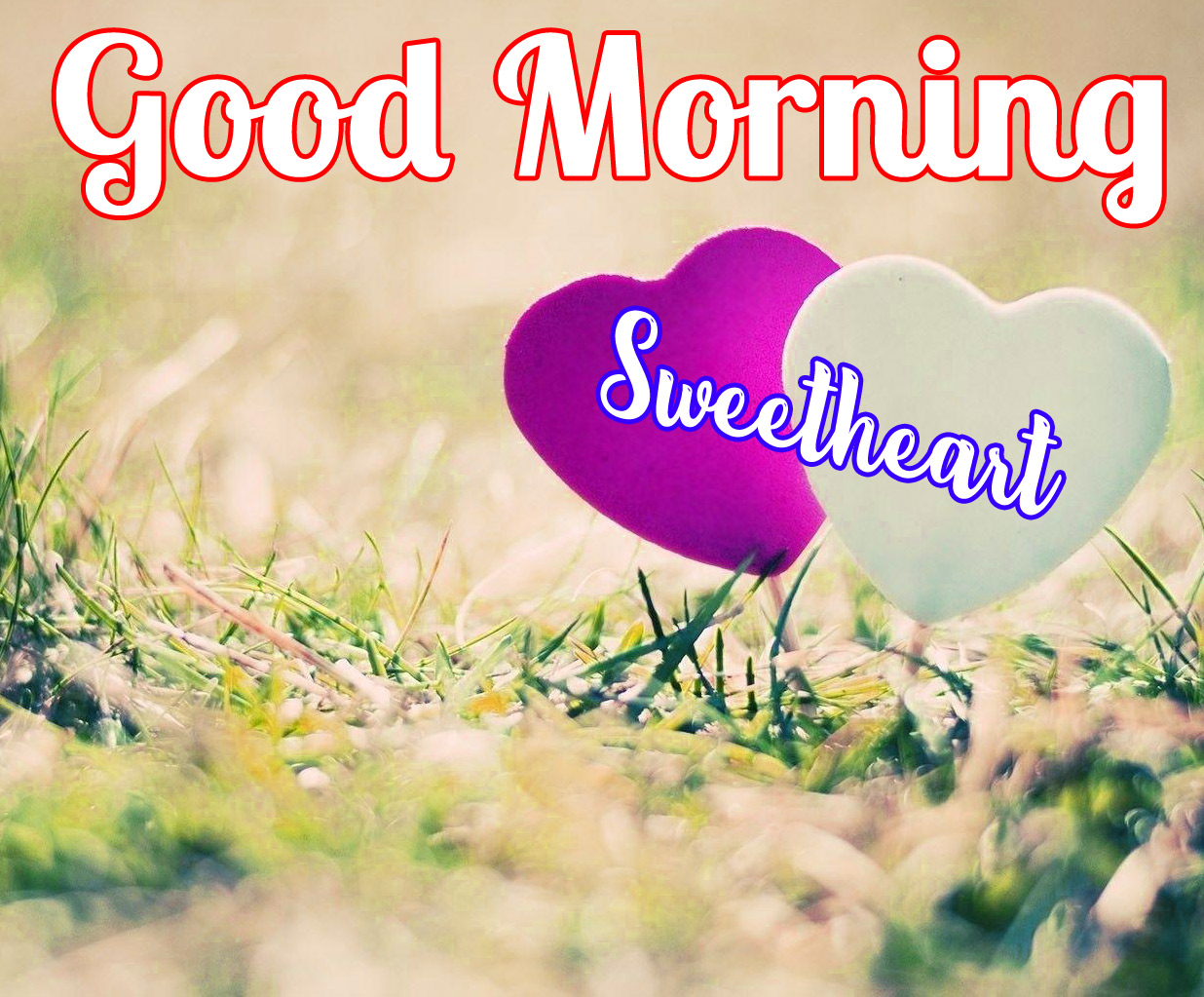 Free Lover good morning Images Pics Download