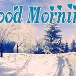 Winter Good Morning Images Pics Wallpaper HD