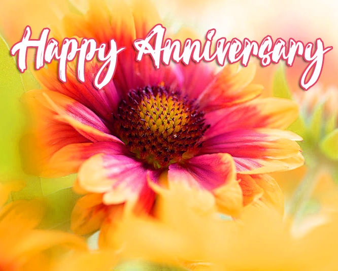 Happy Wedding Anniversary Images Pictures Free