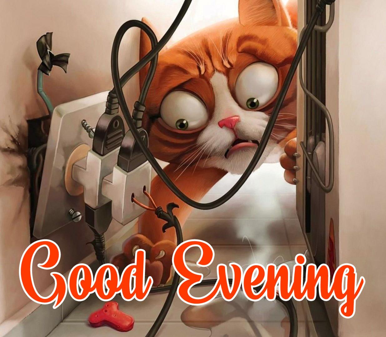 funny good evening pics hd