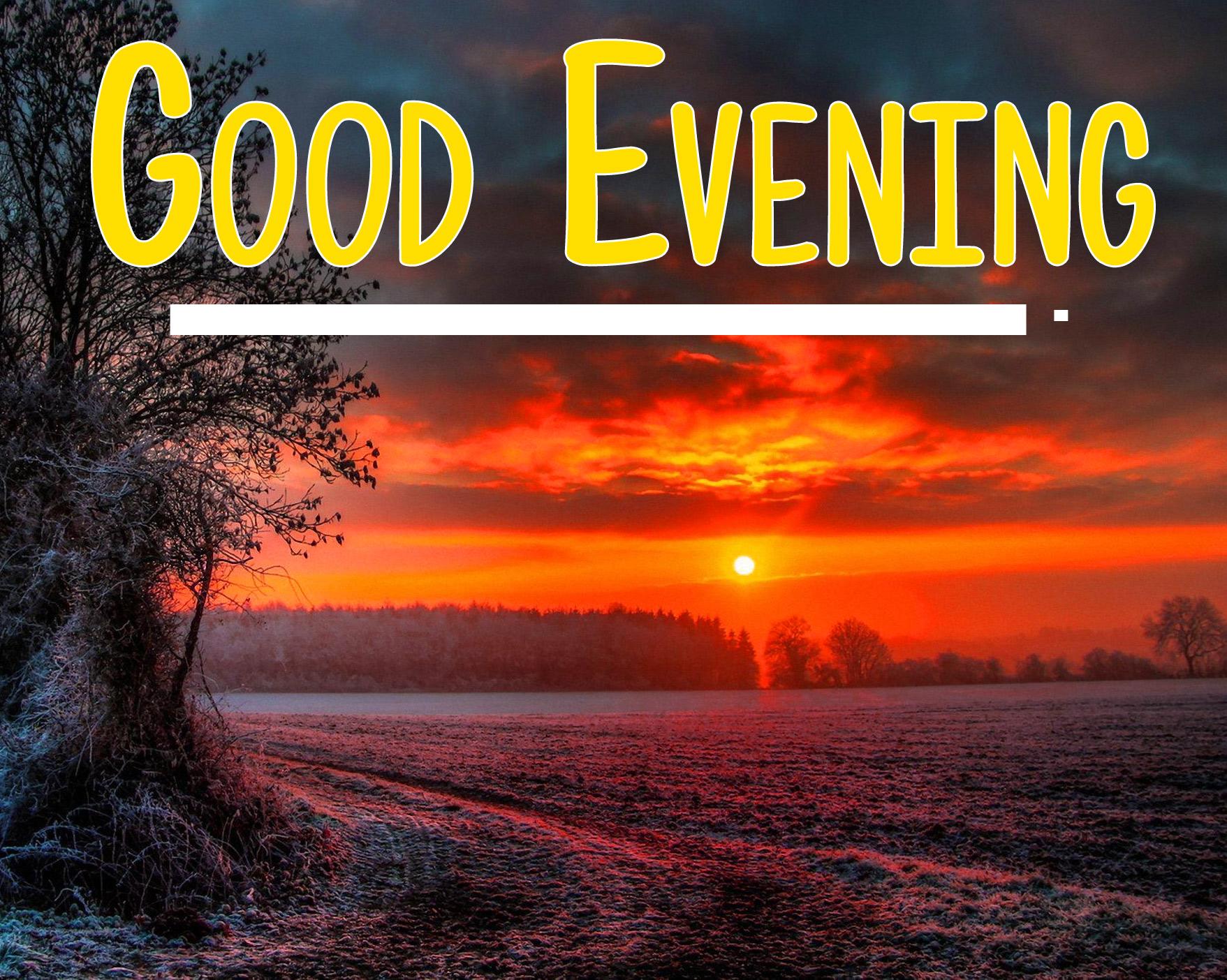 good evening photo 19