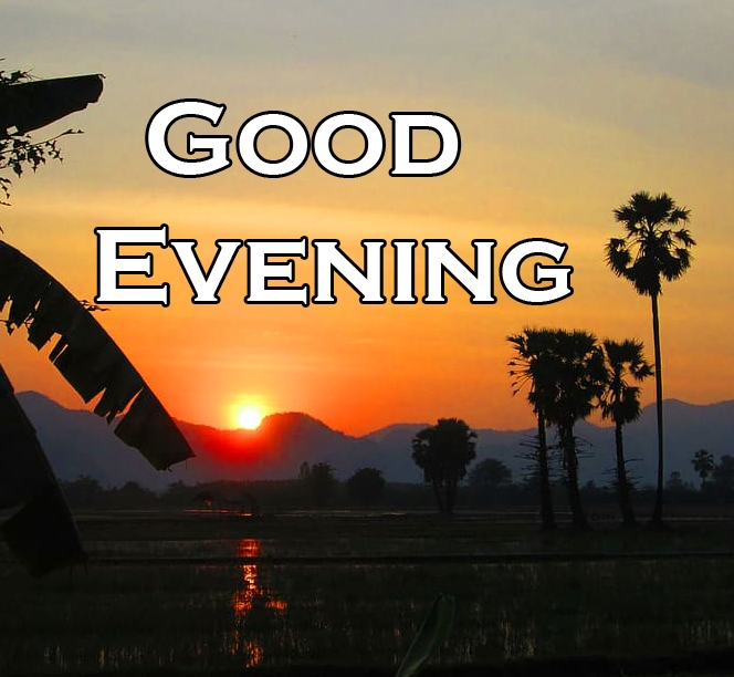 New Free Good Evening Wishes Images Download