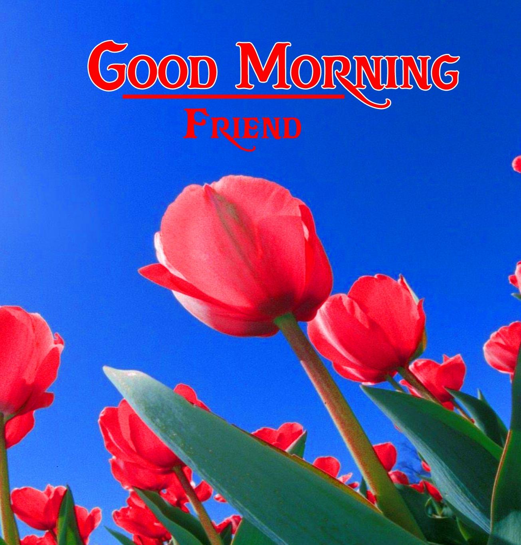 good morning photo 11 1