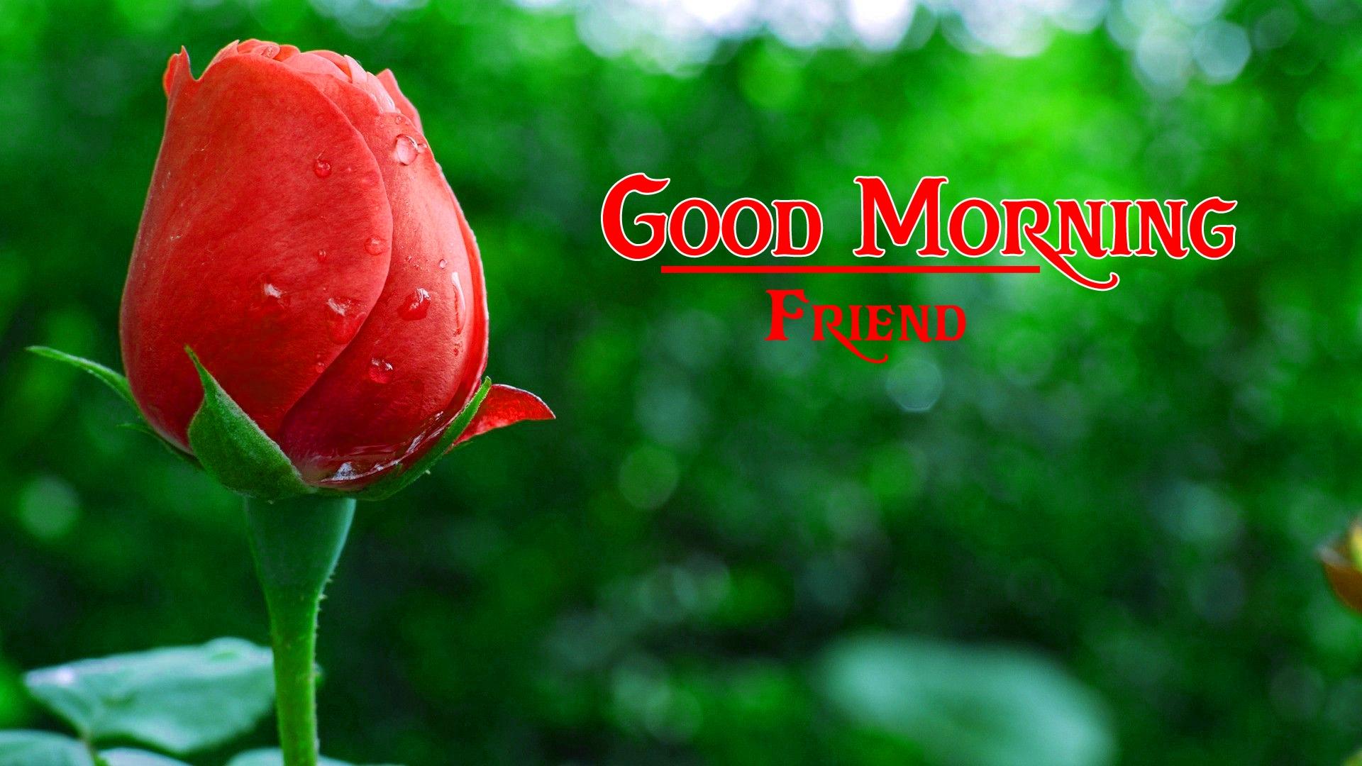 good morning photo 2 1