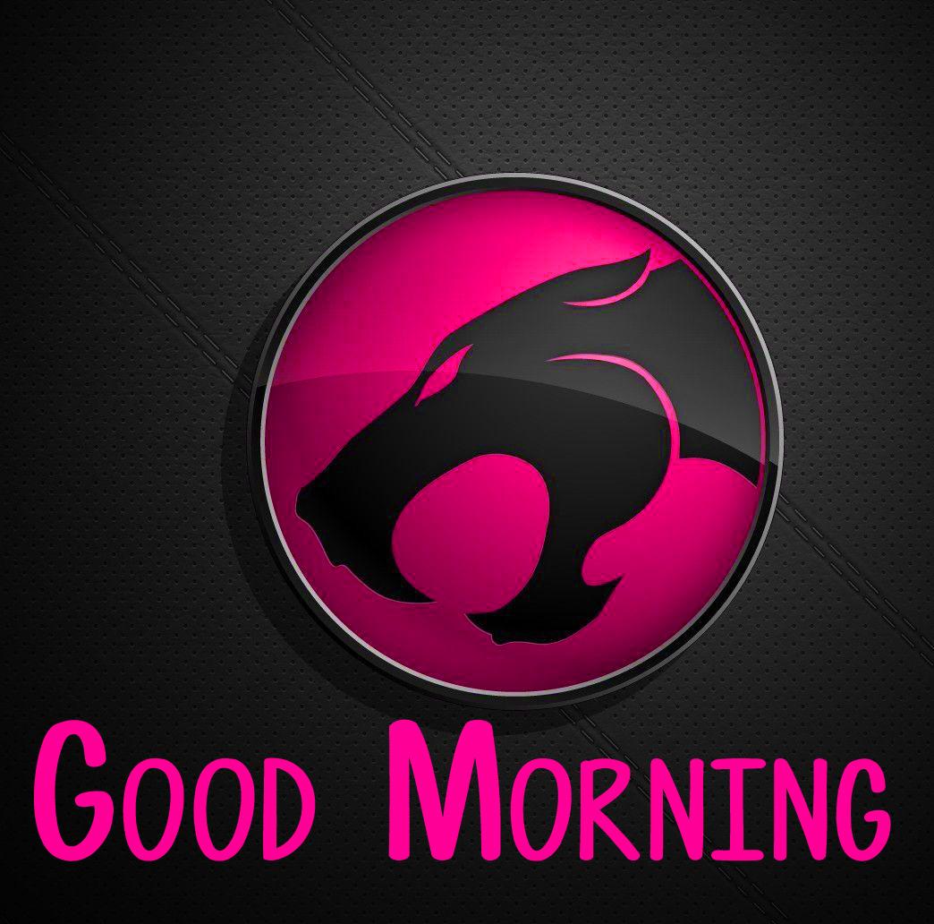 good morning pics 12