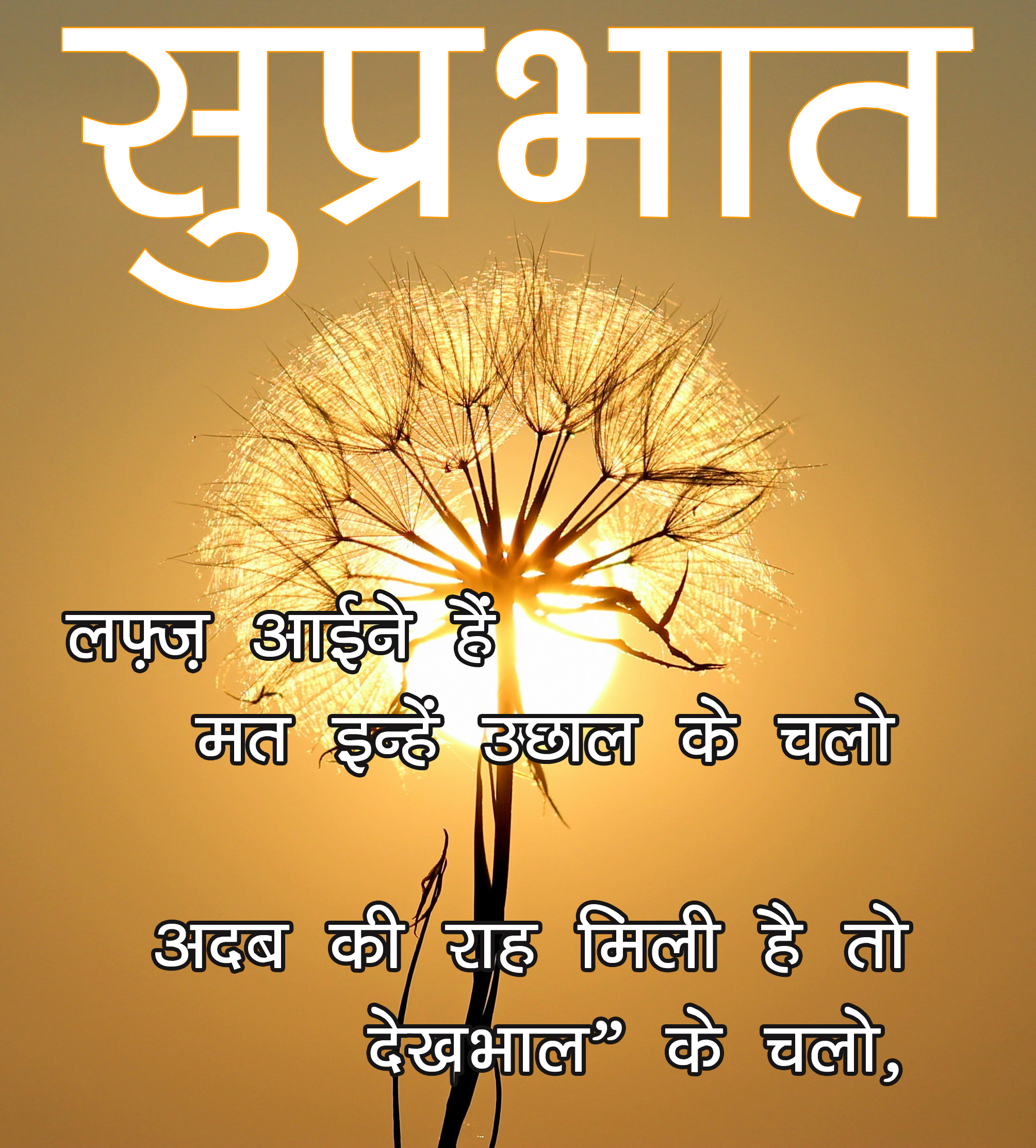 Good Morning Wallpaper With Latest Hindi Quotes