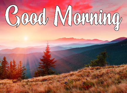 sunrise good morning Pics Free Download