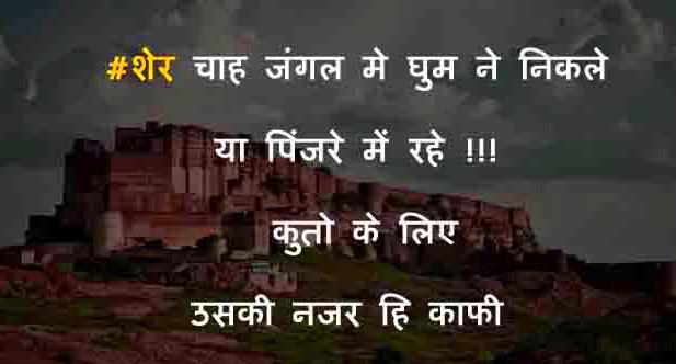 2 Line Hindi Shayari Images Downlaod 20