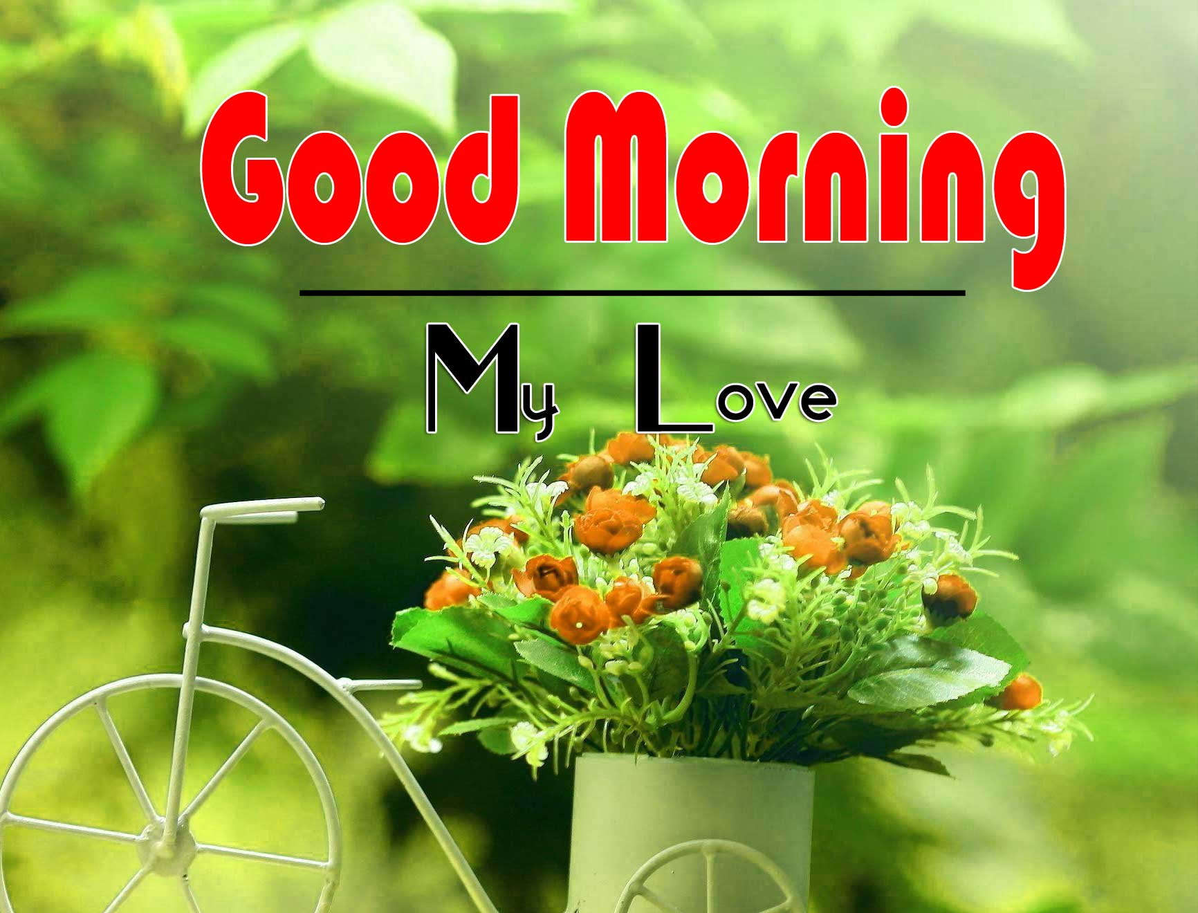Amazing Good Morning Images Pics Free Download