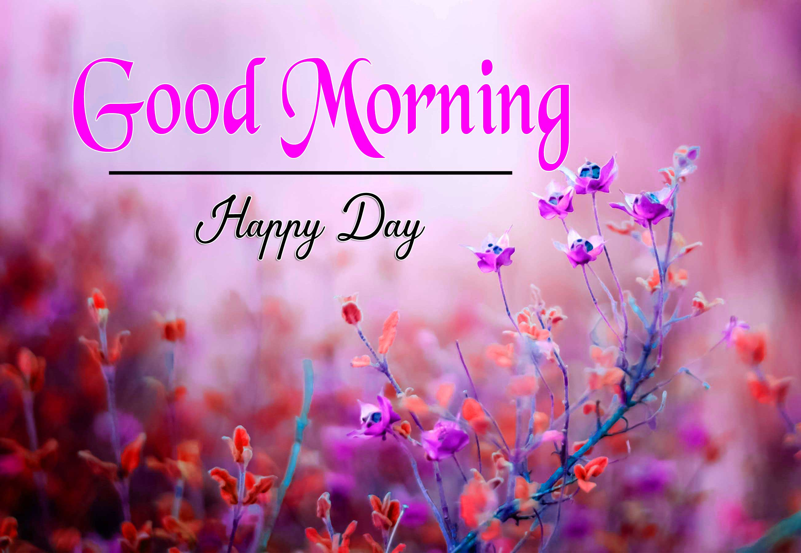 Amazing Good Morning Images Wallpaper for Whatsapp
